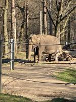 Tierpark6